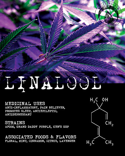 Terpene Tuesday Linalool for Medicine Box